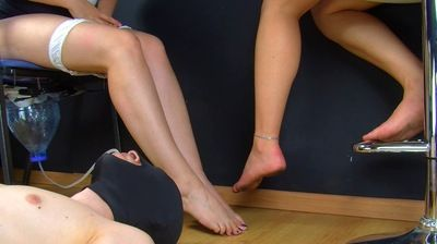 37050 - DRINK PEE AND LICK OUR DIRTY FEET - B